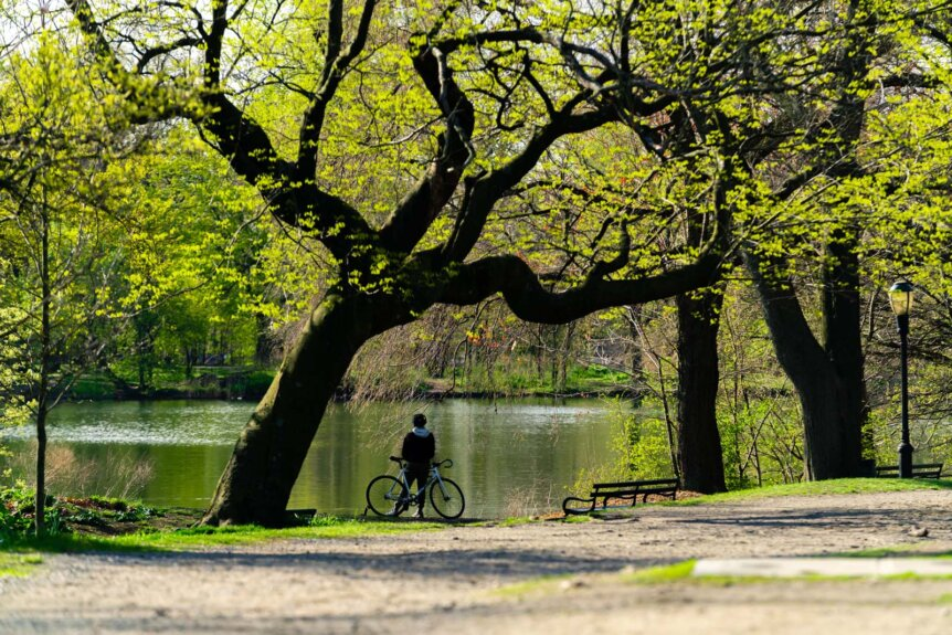 Cyclist taking a break in Prospect Park Brooklyn
