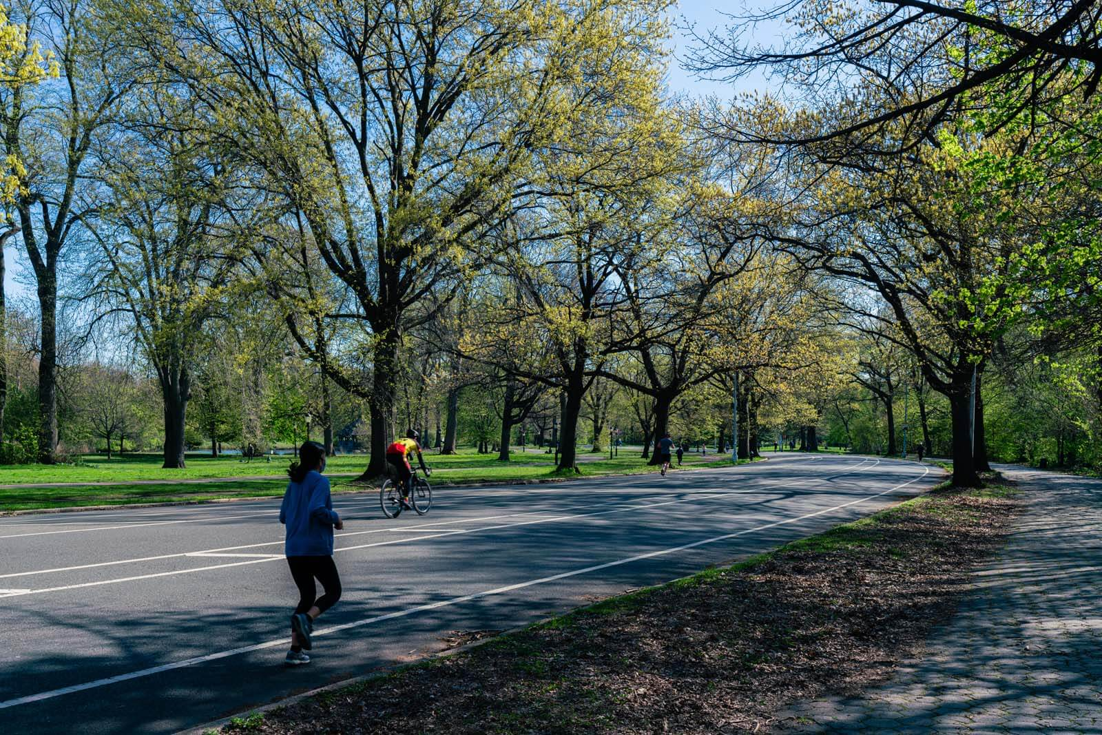 running and cycling path in Prospect Park