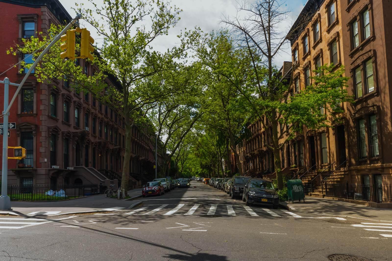 Brownstones in Fort Greene Brooklyn