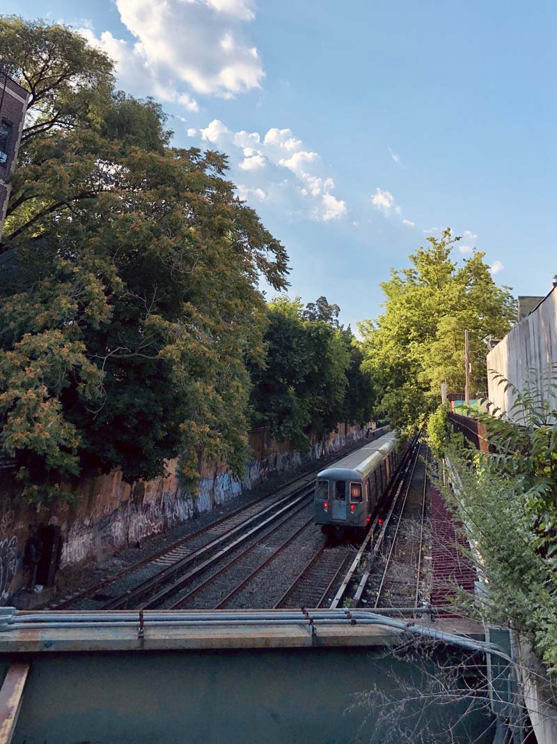 Cortelyou Road Station in Victorian Flatbush and Ditmas Park in Brooklyn