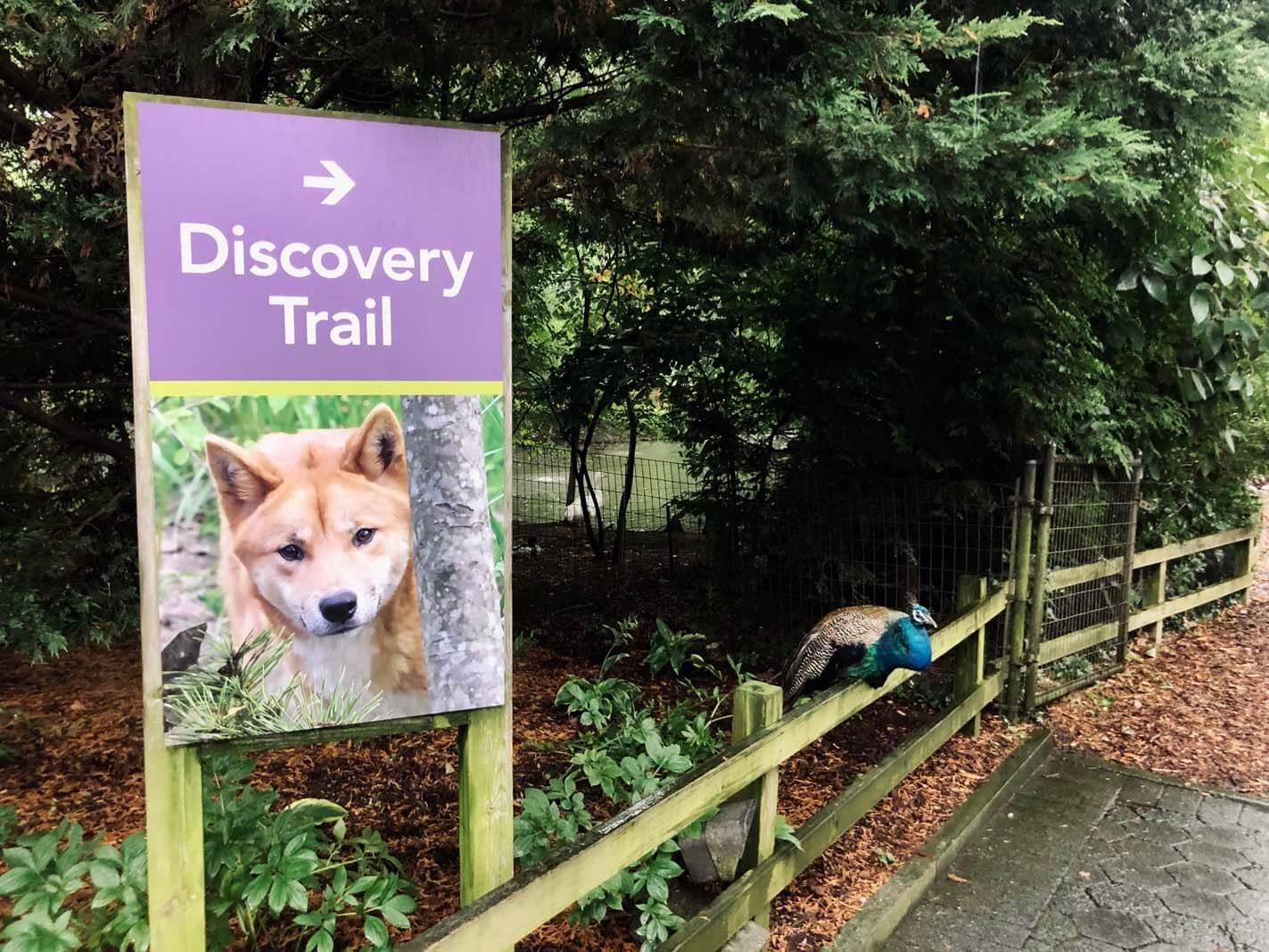 Discovery Trail Sign at Prospect Park Zoo