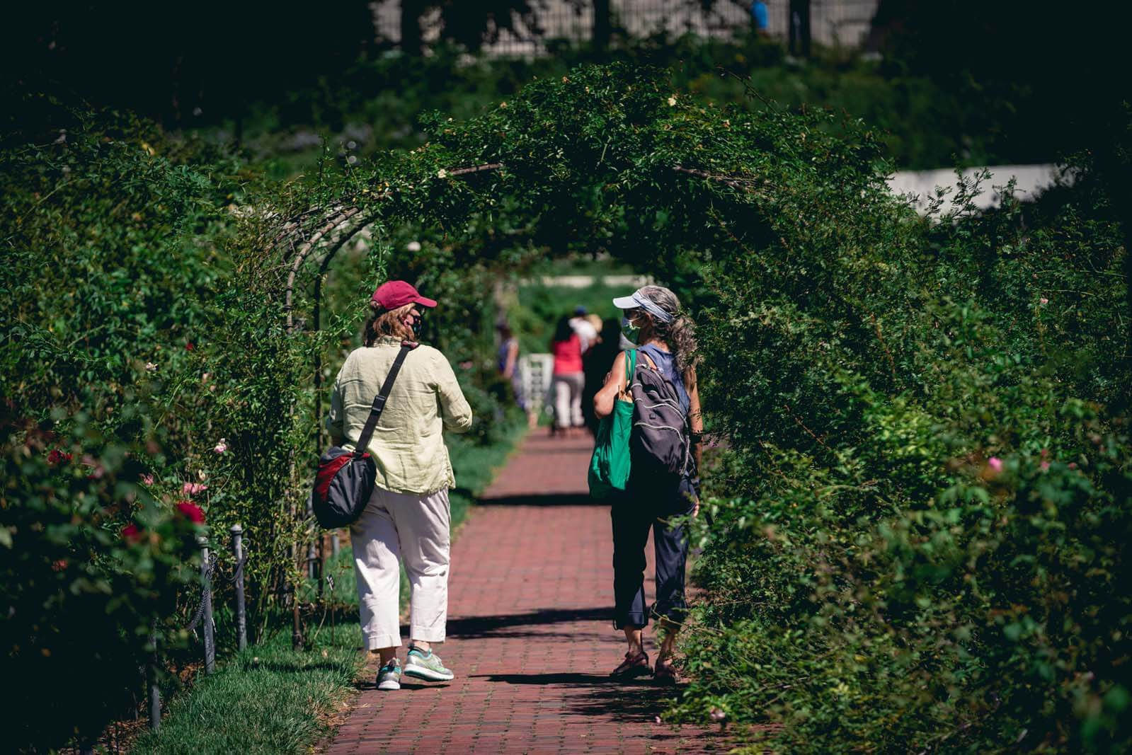 Rose Garden at Brooklyn Botanic Garden
