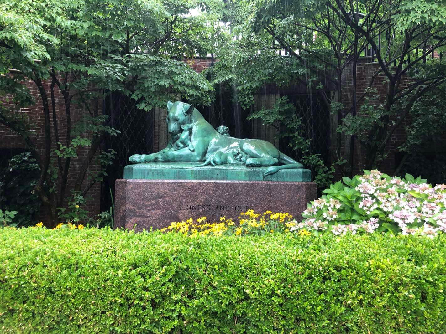 The lioness and her cub statue at Prospect Park Zoo