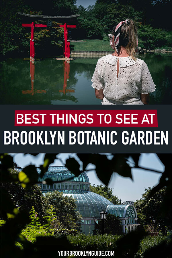 things-to-do-at-brooklyn-botanical
