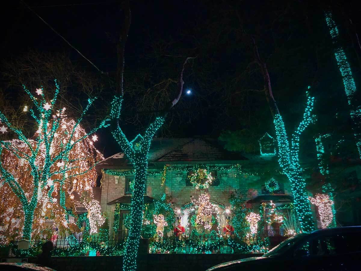 trees-all-lit-up-for-christmas-at-home-in-dyker-heights-brookyn