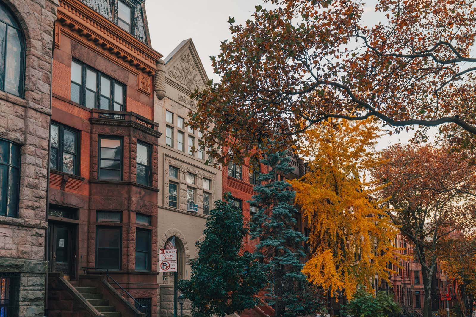 gorgeous row of homes in Park Slope Brooklyn