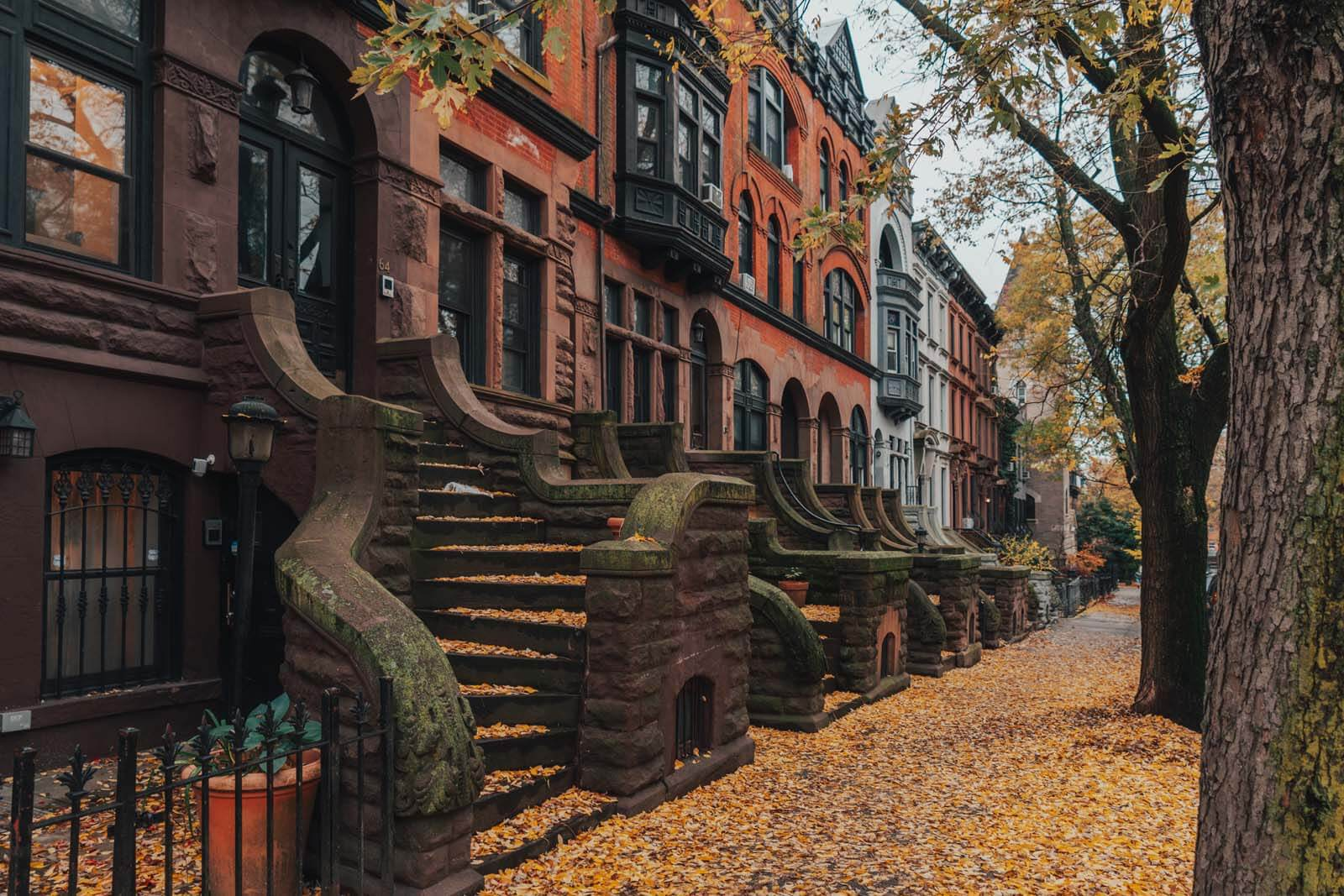 pretty steps and details in Park Slope Brownstones in Brooklyn