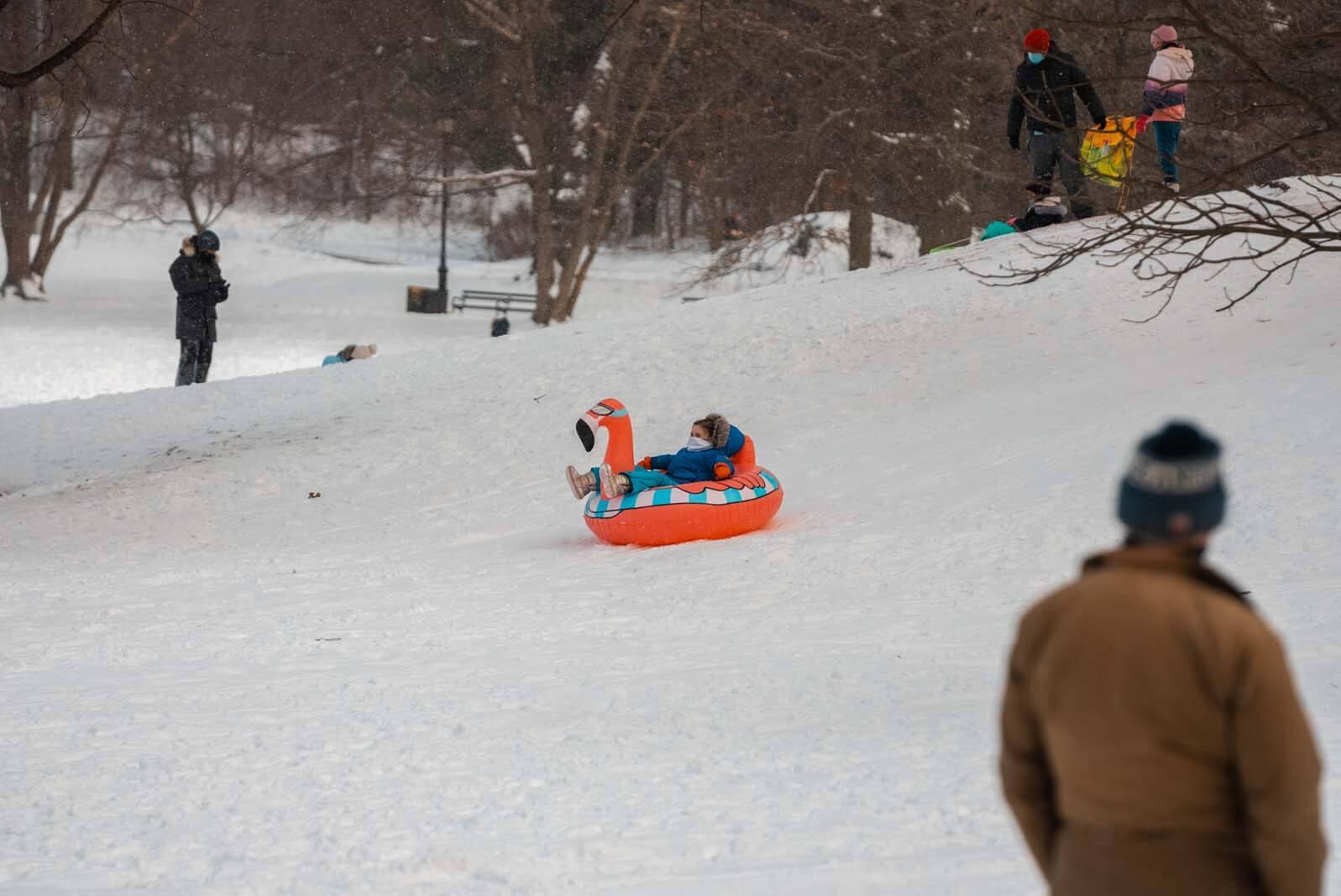sledding in prospect park in the winter in nyc
