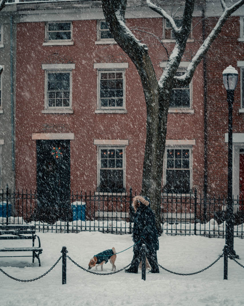 Cobble Hill Park on a snowy day and a dog walker in Brooklyn