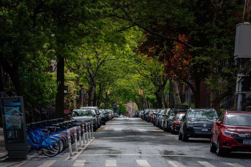 Lush street in Carroll Gardens in the summer in Brooklyn