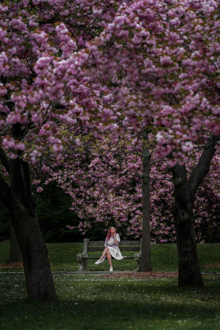 girl sitting on bench enjoying the cherry blossoms in brooklyn botanic garden