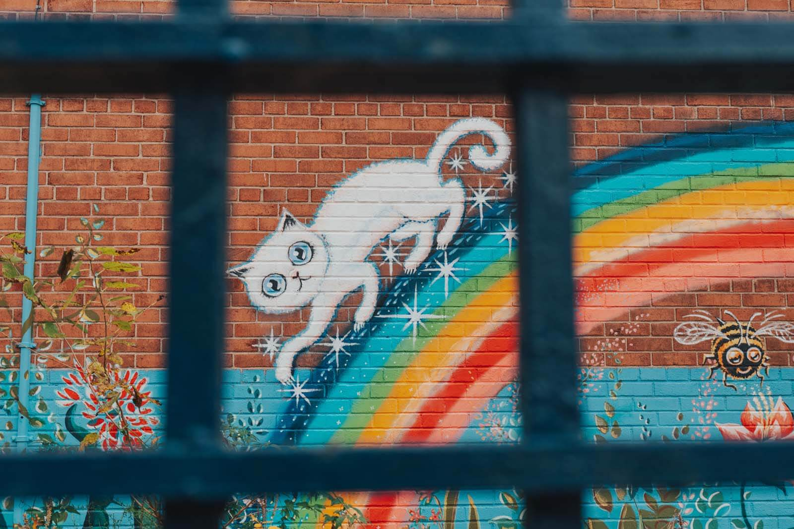 Fun cat mural at PS 9 in Prospect Heights Brooklyn on Underhill Avenue
