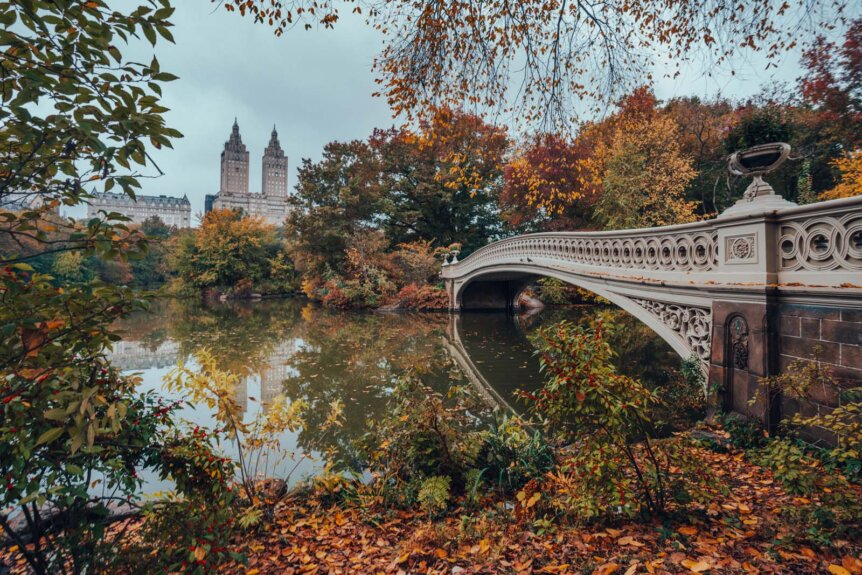 Central Park in the Fall in NYC