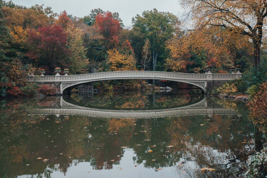 Bow Bridge in Central Park in the fall in NYC with colorful fall leaves