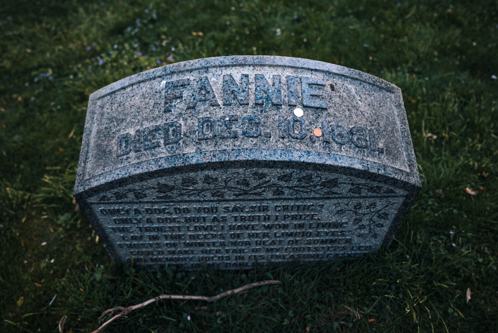 Fannie the dog gravestone at Greenwood cemetery in Brooklyn