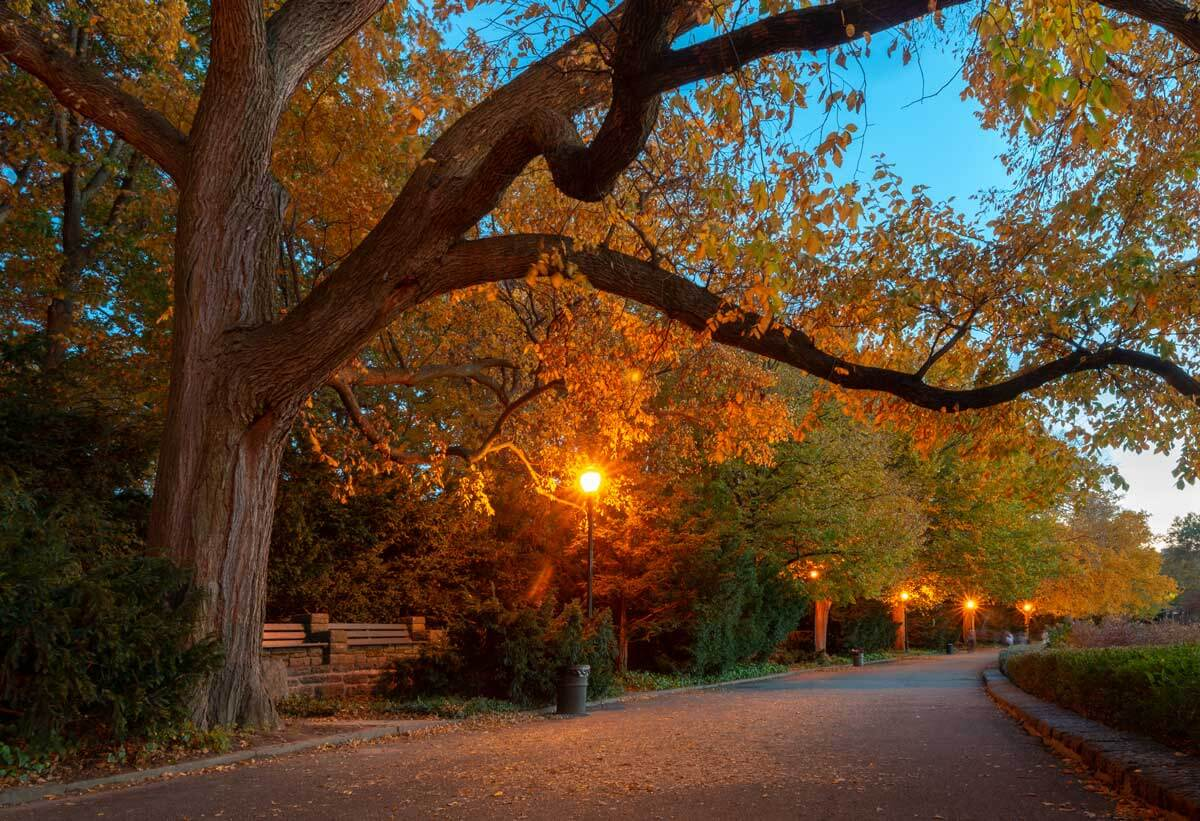 Fort-Tryon-Park-in-NYC-with-fall-foliage