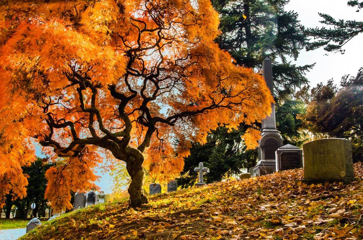 Green-Wood-Cemetery-in-Sunset-Park-Brooklyn-in-the-fall
