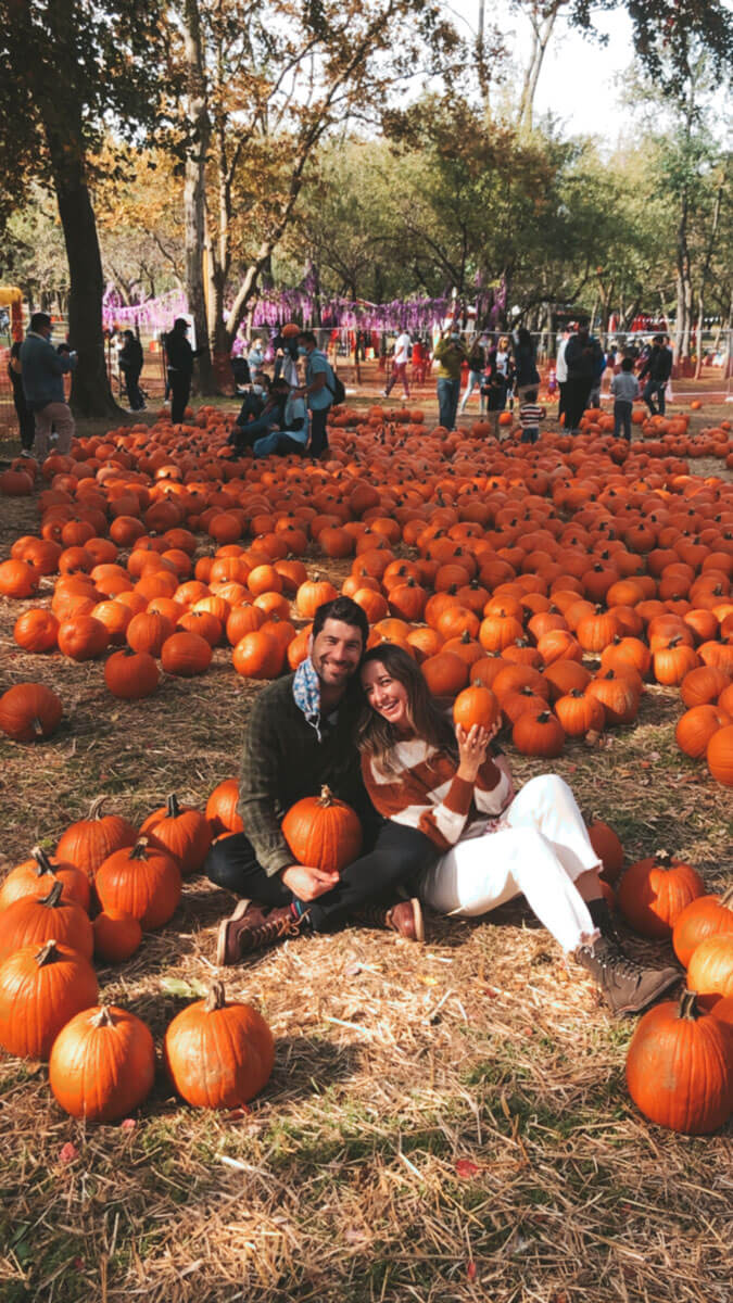 fall-pumpking-picking-in-nyc-at-queens-county-farm-museum