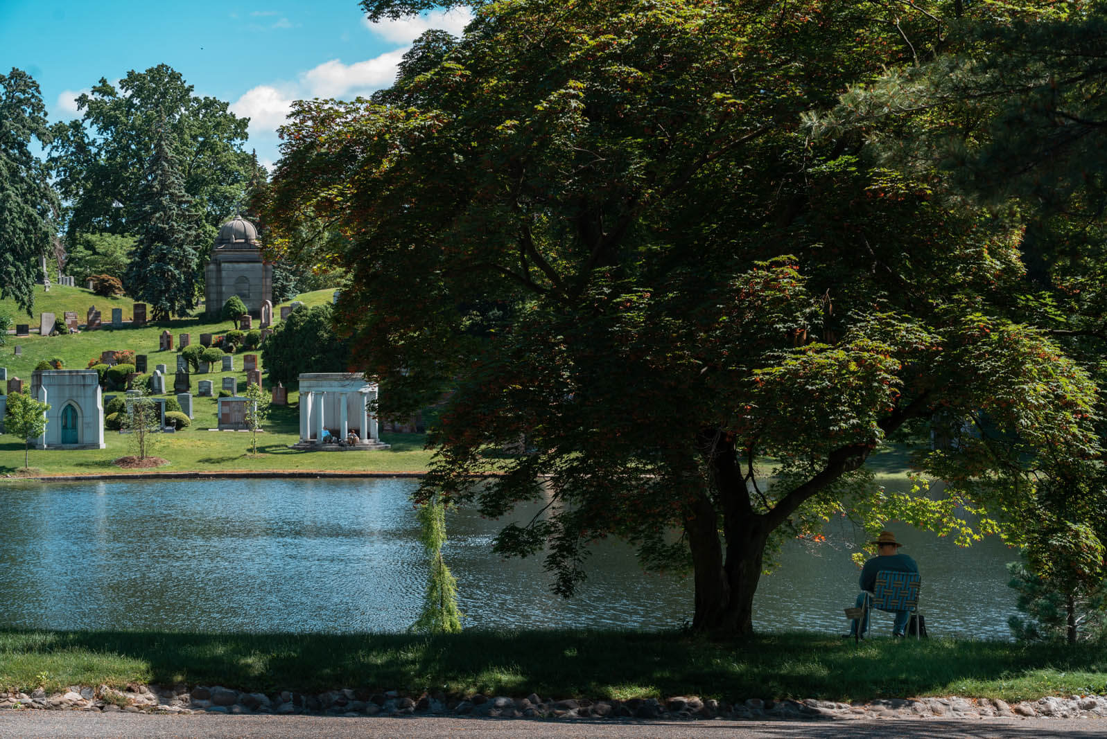 man sitting under a tree next to a lake in GreenWood Cemetery in Brooklyn