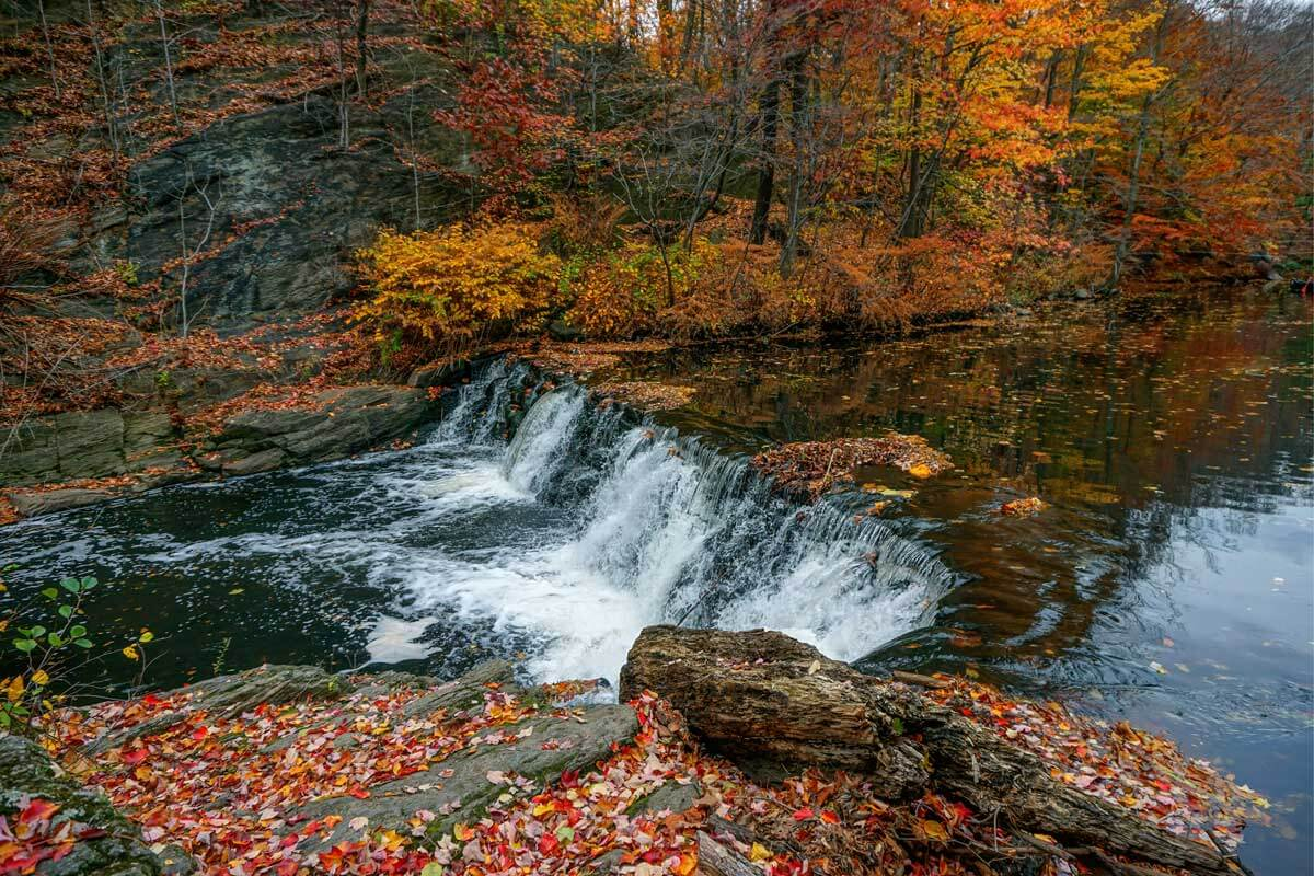 the-bronx-river-waterfalls-in-the-new-york-botanical-garden-in-the-fall