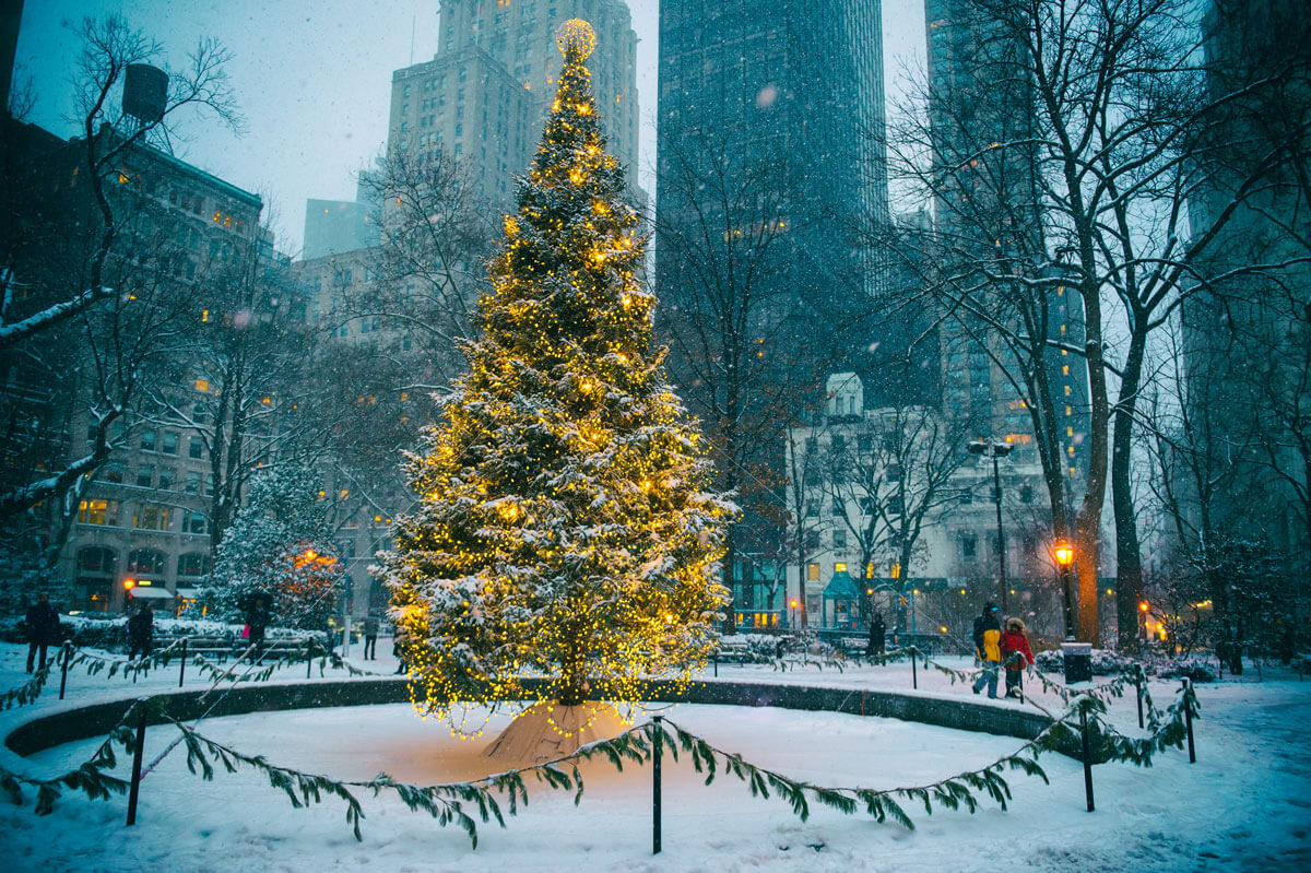 Madison-Square-Park-Christmas-tree-in-NYC